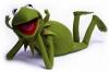 avatar_Kermit3003
